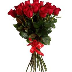 21 роза_красная