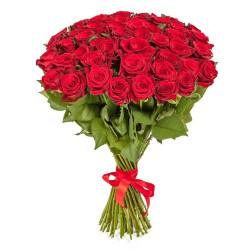 51 красная_роза