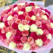 101_разноцветная_роза_2